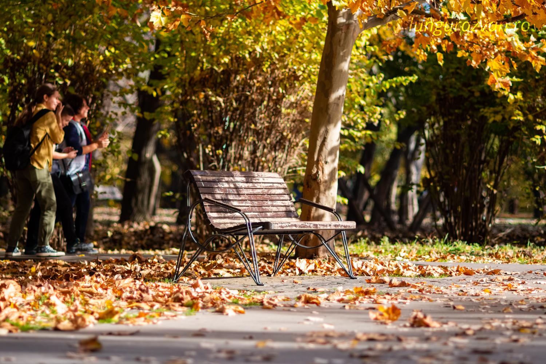 Beautiful Autumn Day in IOR Park